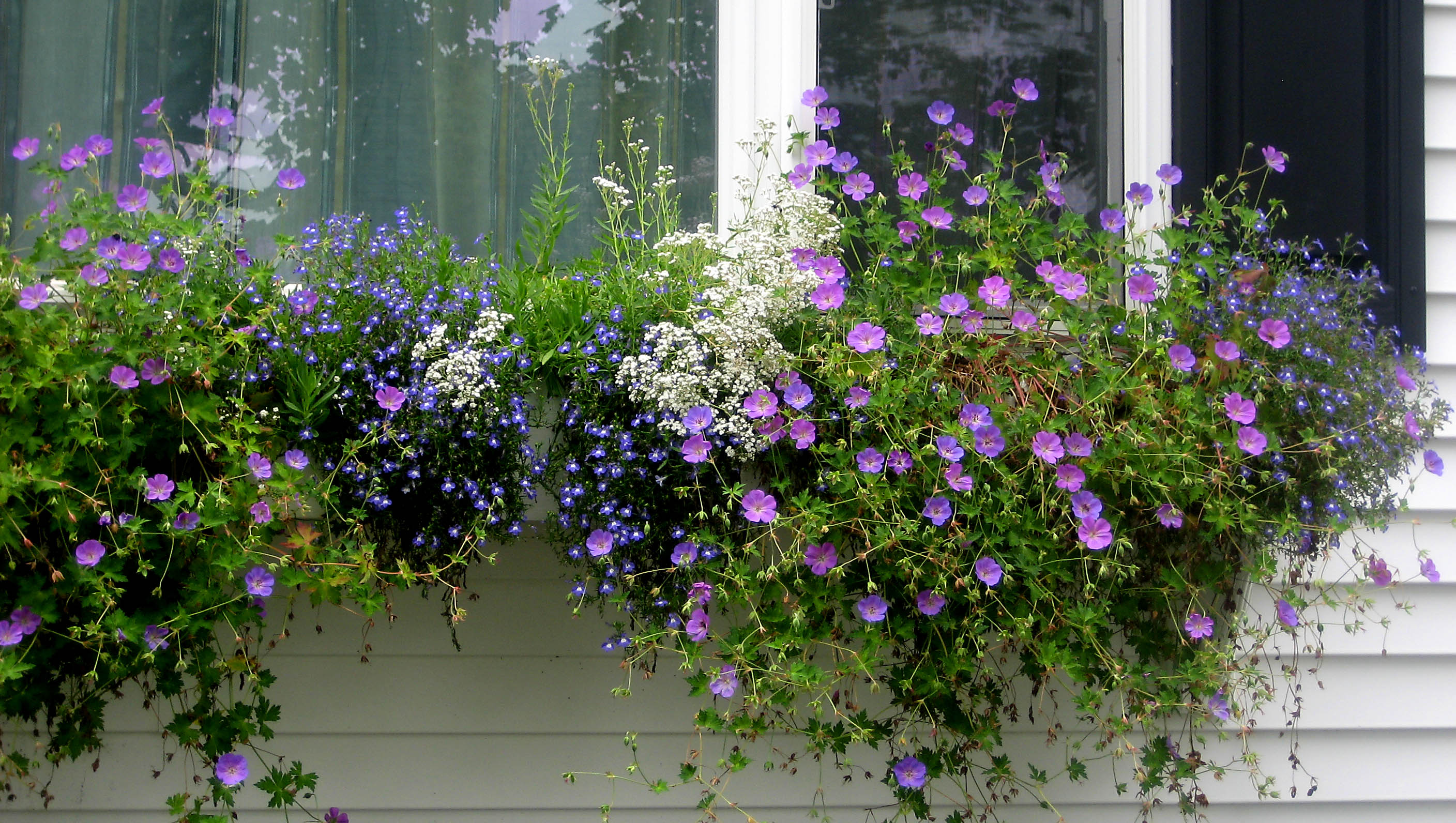 How to Build a Picture Window Sized Window Box on Vinyl Siding